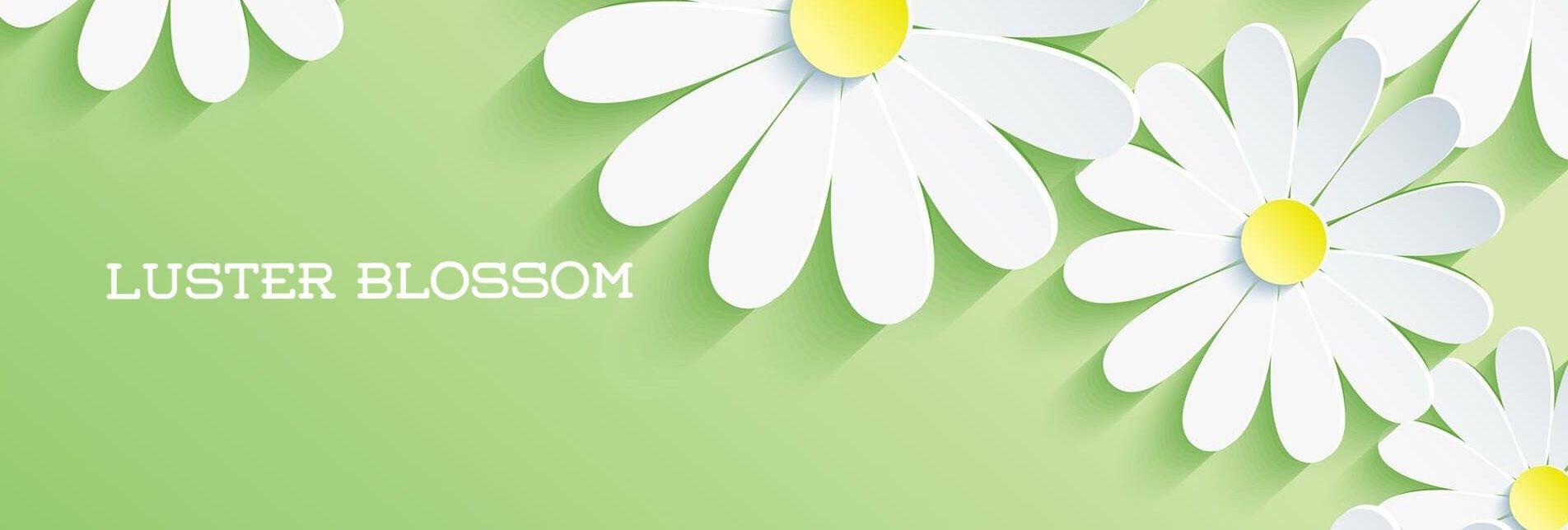 ECサポート・集客・SEO対策・SNS連動サポートのLusterblossom